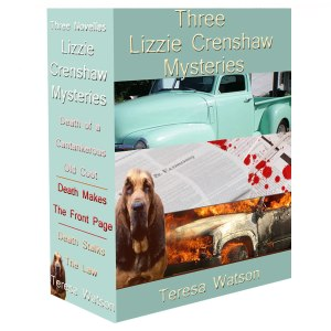 Lizzie box set cover